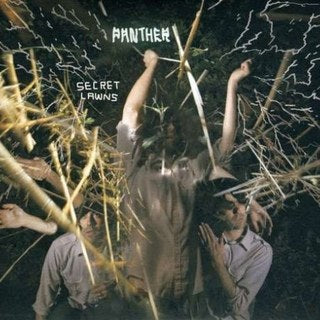 Panther - Secret Lawns (LP)