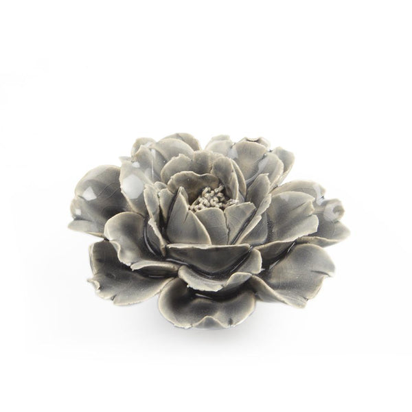 Coral 6 Rose Gray Flower