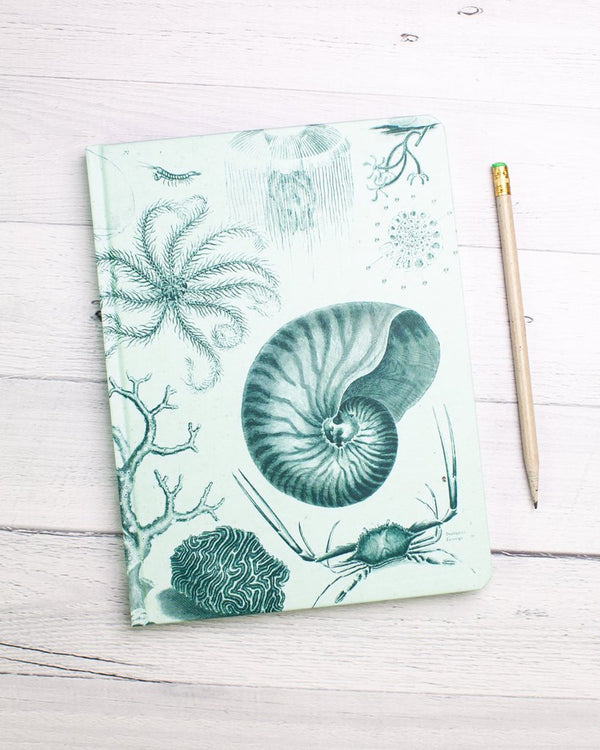 Shallow Seas Lined Journal