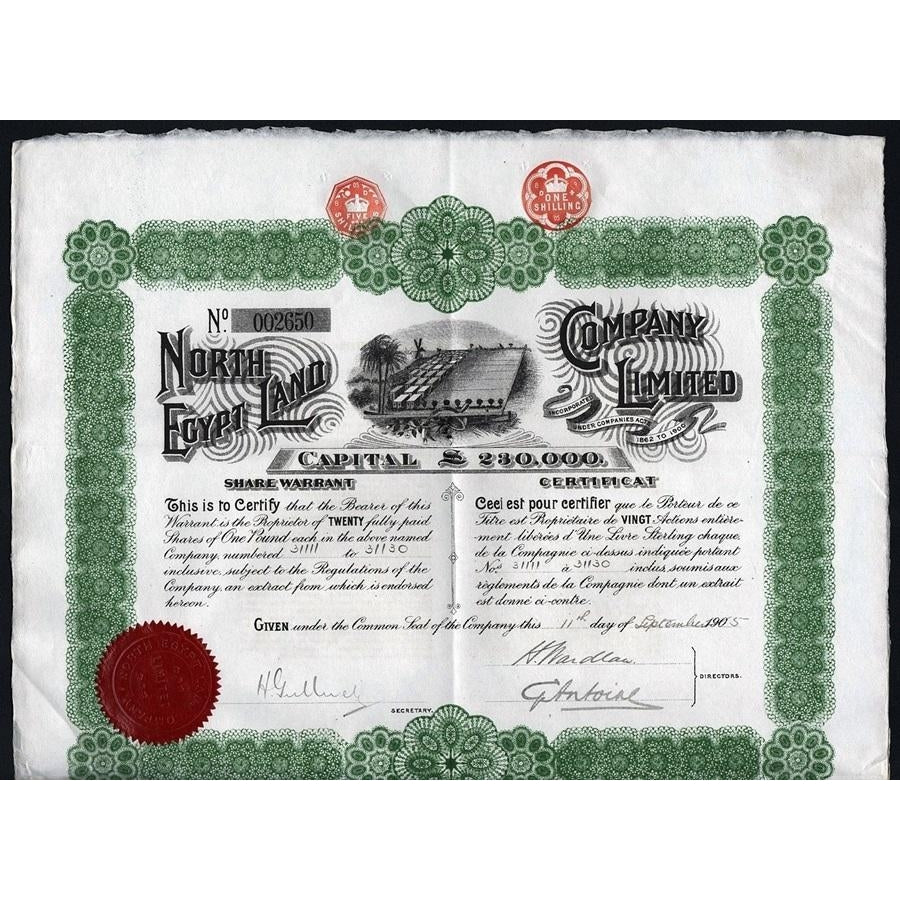 North Egypt Land Company 1905 Share Warrant Stock Certificate