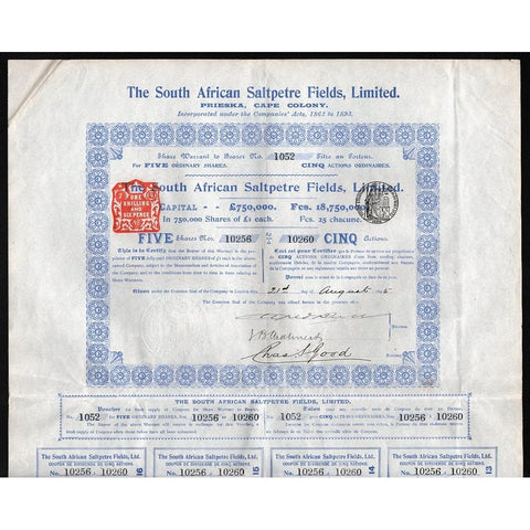 The South African Saltpetre Fields, Limited (Prieska, Cape Colony) Stock Certificate