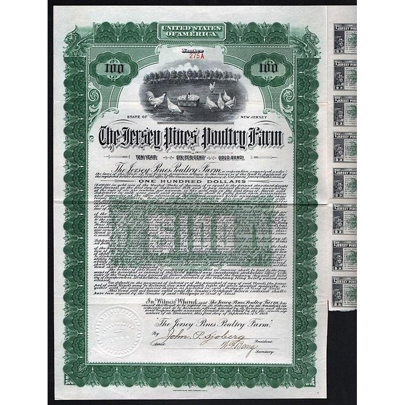 The Jersey Pines Poultry Farm Stock Certificate