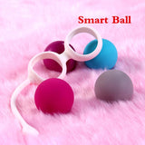 16cm Detachable Holder Silicone Ball with Pull Ring