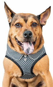 Pet Life ® 'Checkerwag' Checkered Buttoned Mesh Reversible And Breathable Adjustable Dog Harness