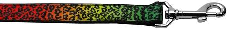Rainbow Leopard Nylon Ribbon 1 inch wide 4ft long Leash