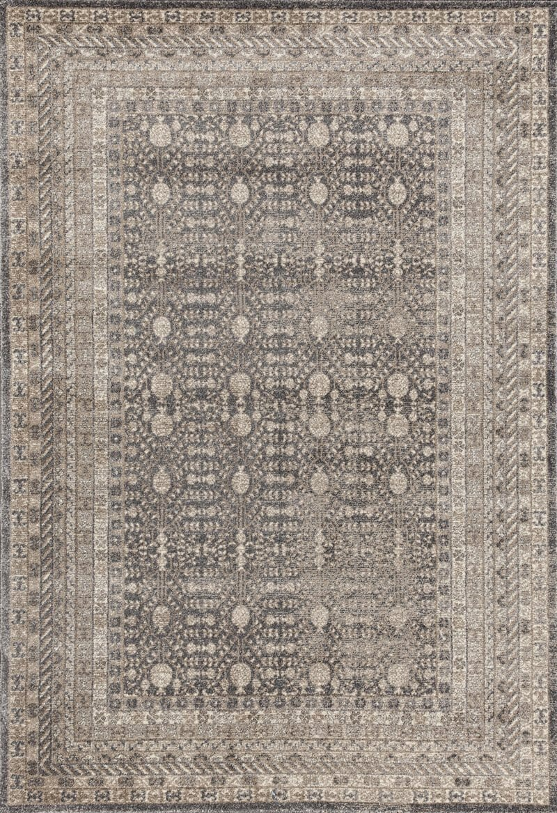 Sharora Traditional Stonewashed Rug