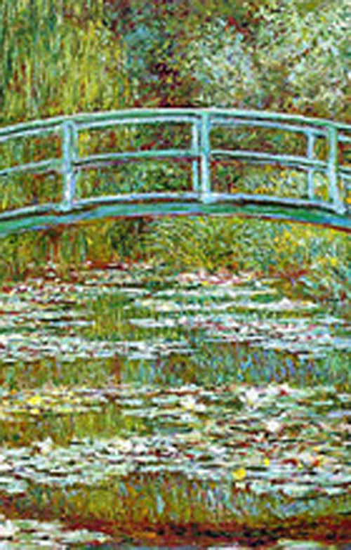 JAPANESE BRIDGE BY CLAUDE MONET PRINTED TIGHTS