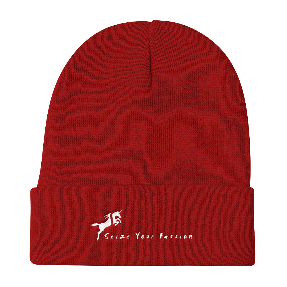Seize Your Passion Knit Beanie