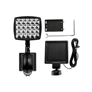 Flood Light with Motion Sensor