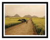 PRE-FRAMED LUOPING FIELDS YUNNAN 20x30