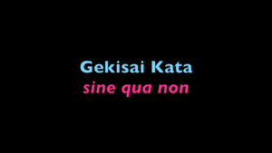 Gekisai Kata Sine Qua Non (for experienced practitioners and teachers)