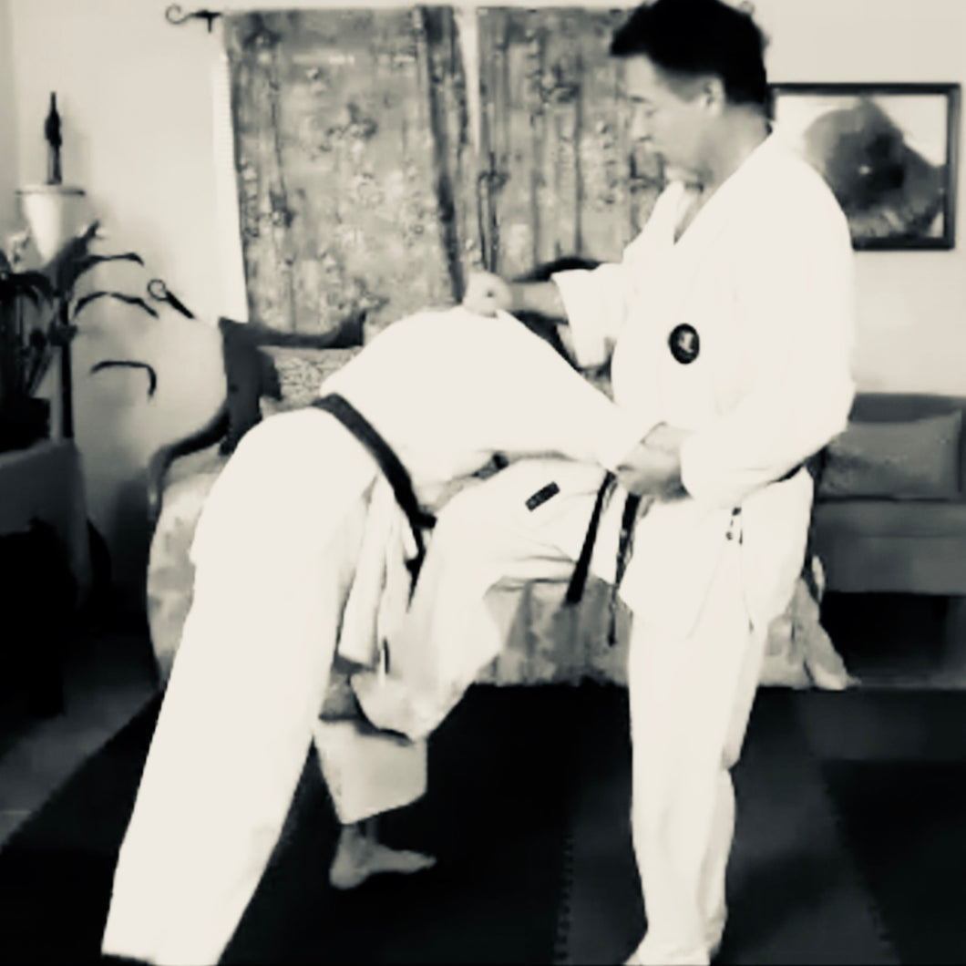 Seisan Kata Pointers & Leg Catch Bunkai
