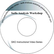 Saifa Analysis Workshop
