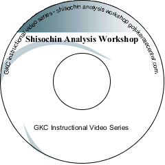 Shisochin Analysis Workshop