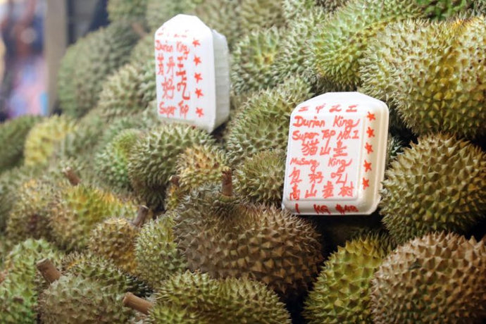 New Royal Durian to Challenge Musang King