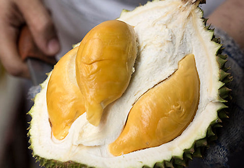 Types of Durians: Malaysia – Durians.com