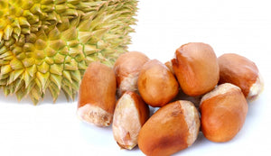 Durian Seeds (5 Per Pack)