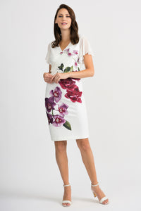 Joseph Ribkoff Floral Print Dress - Vanilla/Multi Colour - 201398