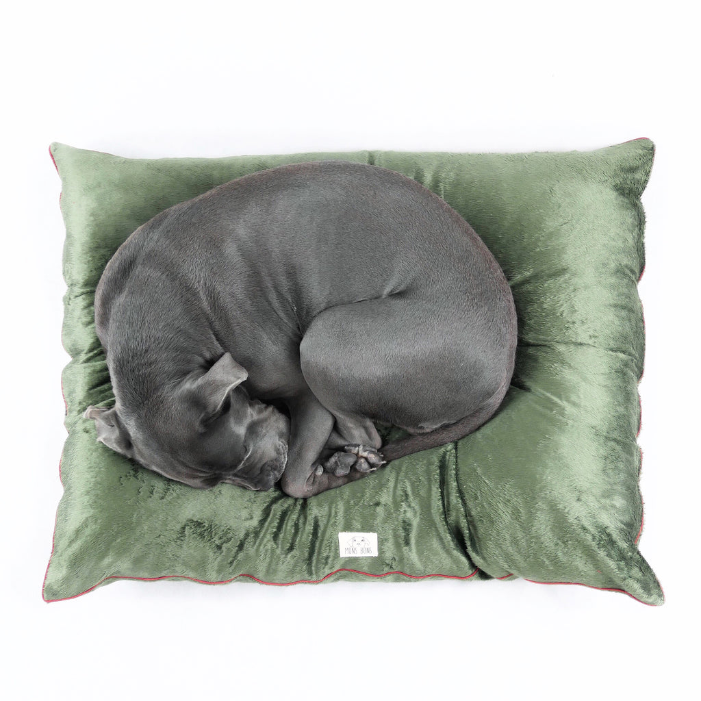 Velvet Cushion - MONS BONS