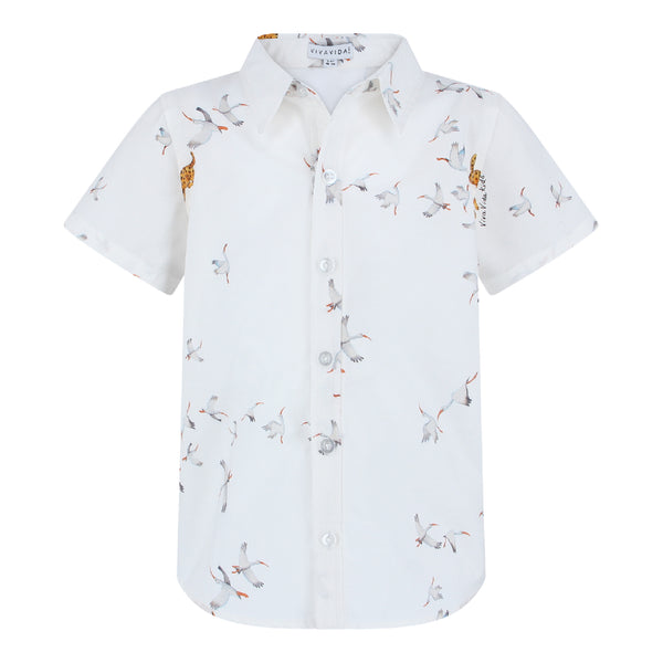 Chris Shirt Boys - Storks