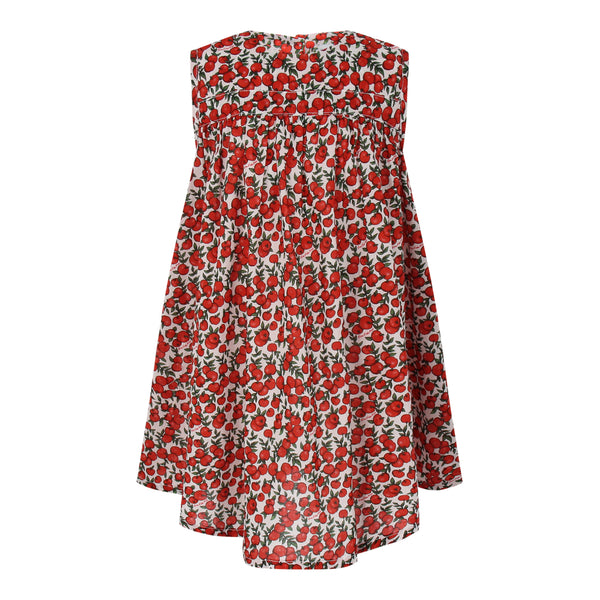 Sol Dress Red Apples