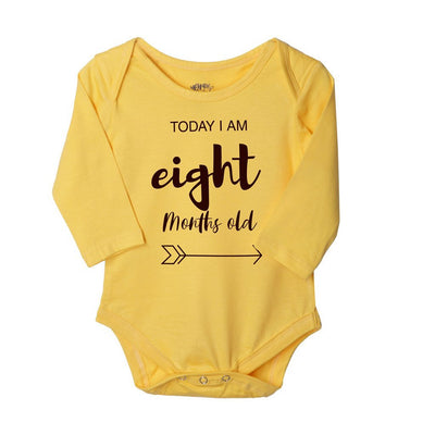 My First 12 Months, Set Of 12 Assorted Bodysuits For The Baby