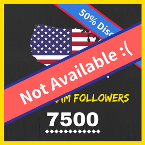 Buy 7500 American Instagram Followers