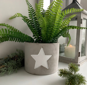 Grey Cement Planter with White Star