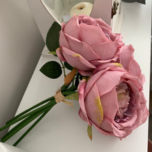 Large Antique Roses (Blush)