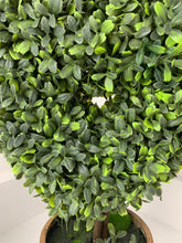 Potted Boxwood Heart 40cm
