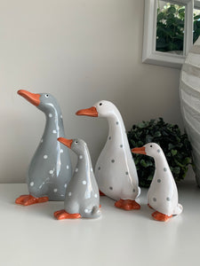 Spotty Ducks ( 2 Colours)