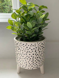 Black & White Planter  (3 designs)