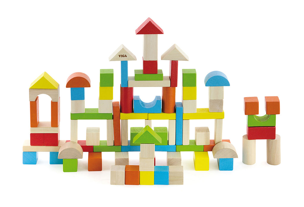 Viga Colourful Block Set (80Pcs)