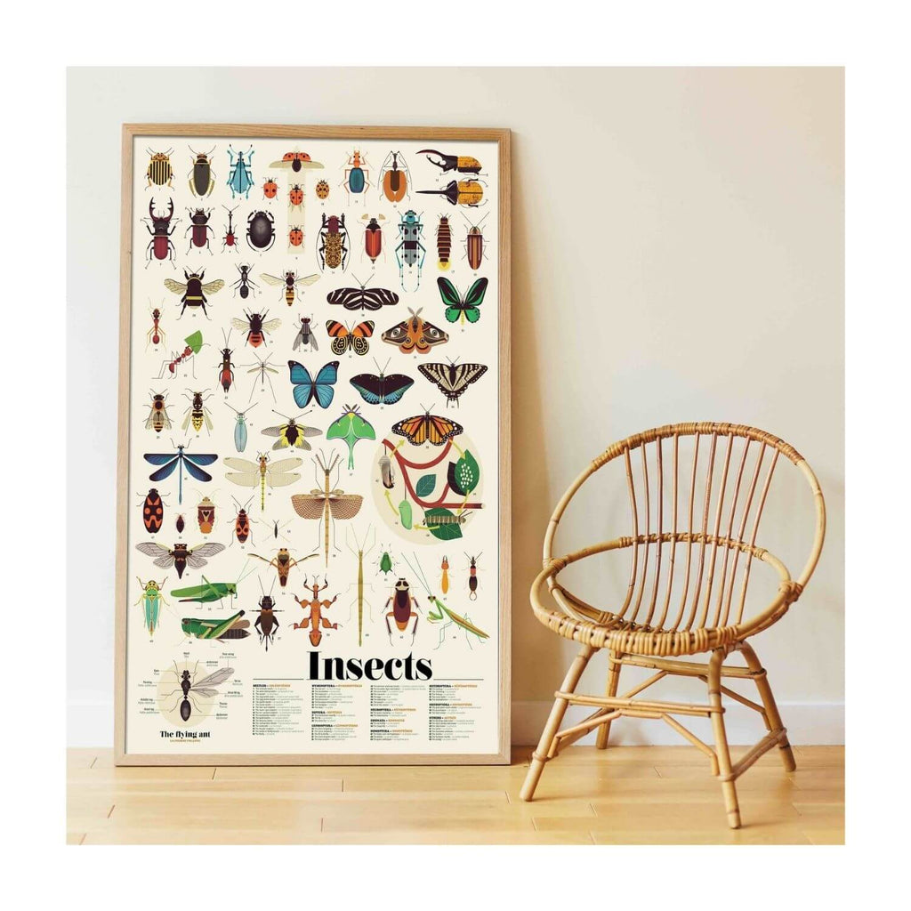Poppik Sticker Poster Discovery - Insects 7