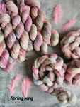 Pre Order Previous Yarn Club