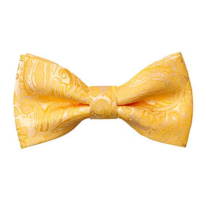 AIRTAILORS ™ Boys Paisley Floral Strapped Pre-tied Kids BowTie