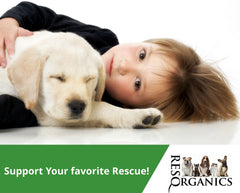 Support Your Favorite Animal Rescue!