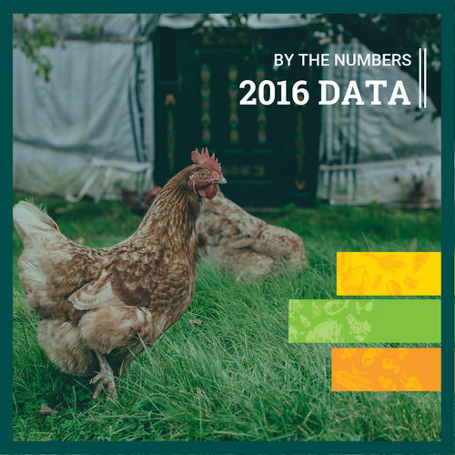 Organic Agriculture By the Numbers (2016 Data)