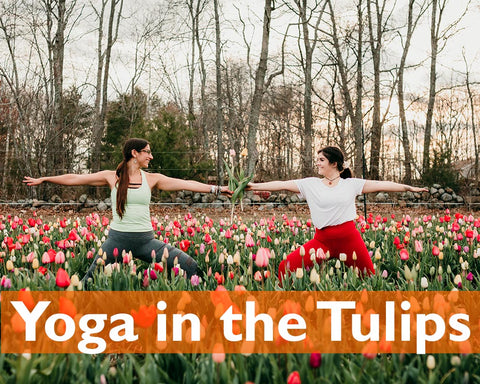 yoga in the tulips