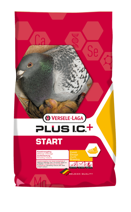 Versele-Laga Start I.C. Plus Breeding MIix 44lb