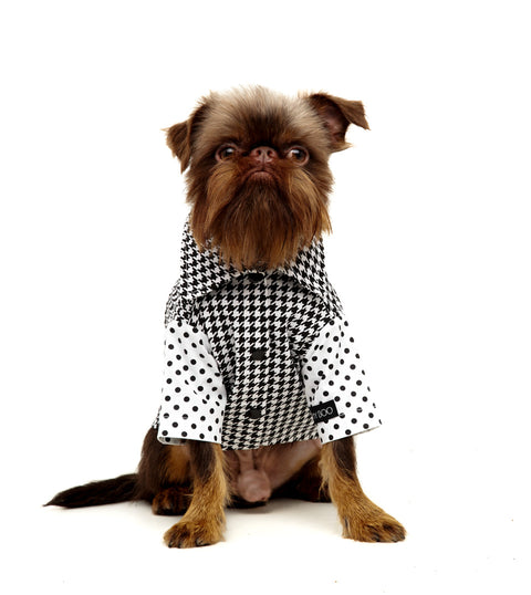 Roupa para Cachorro - Camisa Social Pied Poule