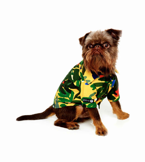 Camisa Pet Artsy MY BOO - Geometria Tropical