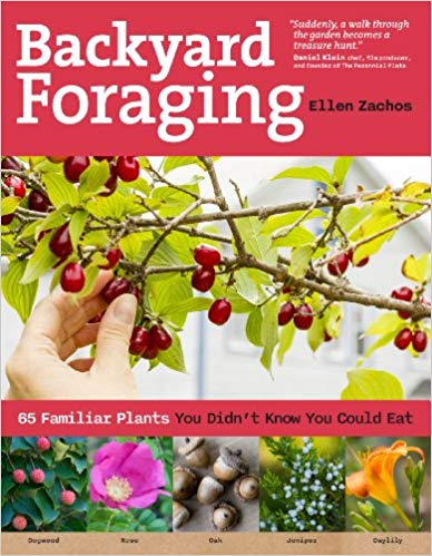 Backyard Foraging - Carolina Readiness, dooms day prepper supplies online