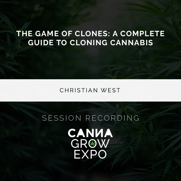 The Game of Clones: A Complete Guide to Cannabis Cloning