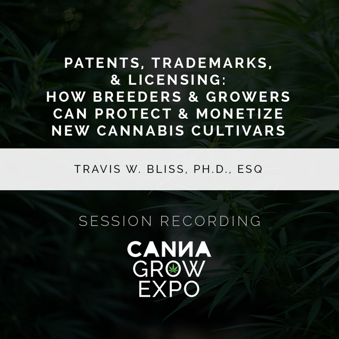 Patents, Trademarks, & Licensing: How Breeders & Growers Can Protect & Monetize New Cannabis Cultivars