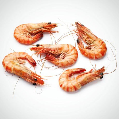 Frozen Cooked Prawn