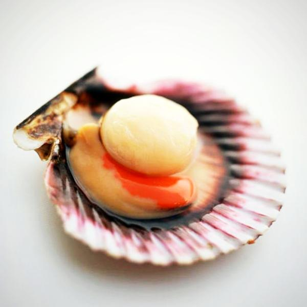 Scallop Half Shell (Per Kg Pack)