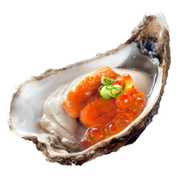 Buy Oyster Uni Combo Online in Singapore at Ninja Food