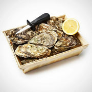 Live French Oyster (Per Dozen)
