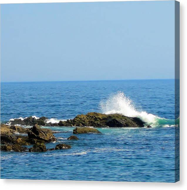 Ocean Spray - Canvas Print